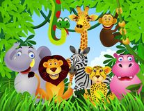 Animal dans la jungle Photos stock