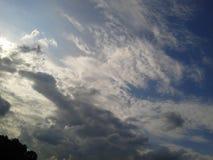 Animal dans nuageux photo stock