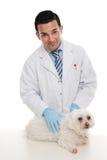 Animal de animal de estimação amigável da terra arrendada do veterinário Imagens de Stock Royalty Free