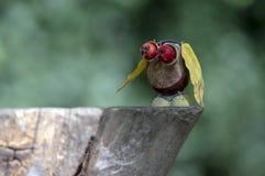 Animal de châtaigne sur le tronçon en bois, hibou fait de châtaigne, gland, feuilles de jaune et fruits rouges d'aubépine, oiseau photo libre de droits