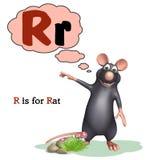 Animal de compagnie de rat avec l'alphabet Image libre de droits