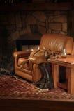 Animal de estimação acolhedor na cadeira Fotos de Stock Royalty Free