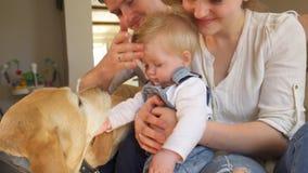 Animal de estimação bonito do cão da carícia do pai e do filho da mãe da família em casa Tiro Handheld vídeos de arquivo