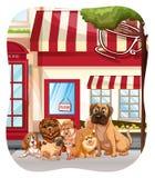Animal de estimação do cão ilustração royalty free