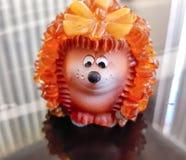 Animal de animal de estimação do ouriço bonito imagem de stock