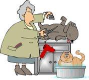 Animal de estimação Groomer ilustração royalty free