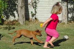 Animal de estimação da criança e do filhote de cachorro Fotos de Stock