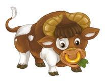 Animal de exploração agrícola feliz dos desenhos animados - touro alegre está estando a vista de sorriso e comer - estilo artísti ilustração stock
