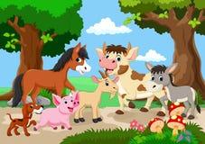 Animal de ferme jouant dans un beau jardin Images stock
