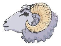 Animal de ferme de Ram Image libre de droits