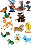 Animal de la historieta Imágenes de archivo libres de regalías