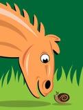 Animal de la velocidad y anfibio lento Foto de archivo libre de regalías
