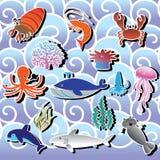 Animal de mar Foto de Stock Royalty Free