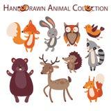 animal del bosque Imágenes de archivo libres de regalías