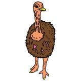 Animal del ejemplo del extracto del diseño de la historieta del icono de la bestia de las aves de corral del pájaro de la avestru Imagen de archivo