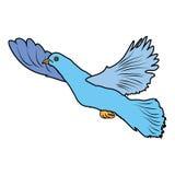 Animal del ejemplo del extracto del diseño de la historieta del icono de la bestia de las aves de corral del pájaro de la paloma Fotos de archivo
