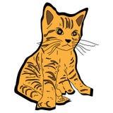 Animal del ejemplo del extracto del diseño de la historieta del icono de los exploradores del gatito del gato Foto de archivo libre de regalías
