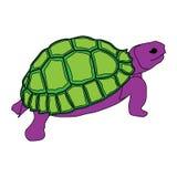 Animal del ejemplo del extracto del diseño de la historieta del icono del mar de la tortuga Foto de archivo