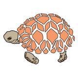 Animal del ejemplo del extracto del diseño de la historieta del icono del mar de la tortuga Foto de archivo libre de regalías