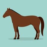Animal design Stock Images