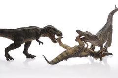 Animal. Dinosaur Close Up - Dinosaurs in white Background Stock Photos
