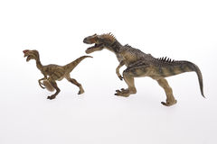 Animal. Dinosaur Close Up - Dinosaurs in white Background Stock Photo