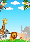Animal divertido en el salvaje Foto de archivo