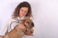 Animal doctor 6. A young animal doctor woman with sharpei dog Royalty Free Stock Photography