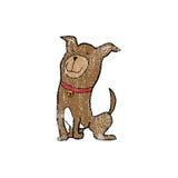 Animal dog sitting stamp Royalty Free Stock Images