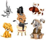 Animal dogs breeds clipart cartoon style  illustration Stock Photos