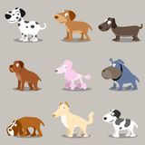 Animal: Dogs collections. Collection of cute dogs in different breeds. isolated stock illustration