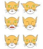Animal doméstico de las sensaciones stock de ilustración