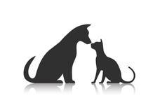 Animal doméstico de los amigos Fotos de archivo libres de regalías