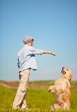 Animal doméstico del entrenamiento Fotografía de archivo libre de regalías