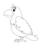 Animal doodle for parrot bird Royalty Free Stock Photo