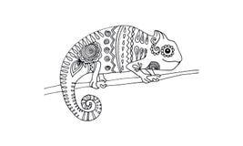 Animal draw for antistress - chameleon Stock Photos