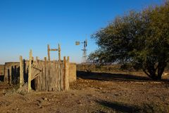 Animal drinking ponds under thorn trees. Farm animal drinking ponds under two thorn trees in an arid and dry landscape image in landscape format with copy space Stock Image