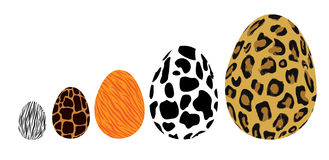 Animal egg. A collection of animal inspired egg Stock Images