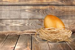 Animal Egg. Golden Animal Nest Nest Egg Treasure Achievement Easter Royalty Free Stock Photo