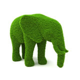 Animal elephant shaped hedge. On a white background. Part of an animal theme series Stock Images