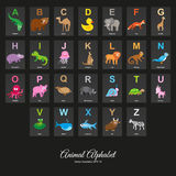 Animal English Alphabet Royalty Free Stock Photo