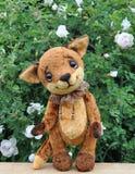 Animal et fleurs de renard de Ron Photographie stock