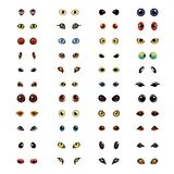 Animal eyes big vector set. Big collection of different animal eyes in vector Stock Image