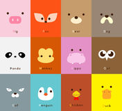 Animal face set Stock Photography