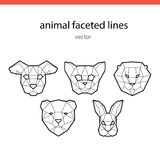 Animal faces of the line vector Stock Images