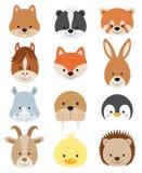 Animal Faces Set. Illustration of baby animal face set Royalty Free Stock Photo