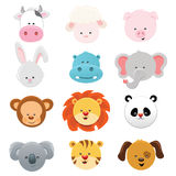 Animal Faces. Vector Collection of cute little animal faces Stock Images