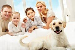 Animal familier Photographie stock libre de droits