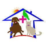 Animal familier care Images stock