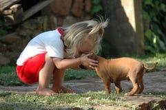Animal familier d'enfant et de chiot Image stock